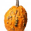Stock Photo: Pumpkin isolated on white