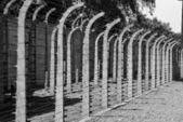 Wire fence in Auschwitz concentration camp — Foto Stock