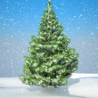 Snowbound Christmas firtree — Stock Photo