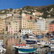 Little port of Camogli — Stock Photo