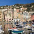 Stock Photo: Little port of Camogli
