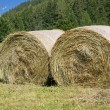 Royalty-Free Stock Photo: Two hay bales