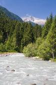 Sarca stream, Trentino, Italy — Stock Photo