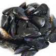 Royalty-Free Stock Photo: Fresh mussels