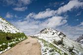 Sendero de montaña — Foto de Stock