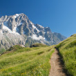 Alpine path — Stock Photo #3771507
