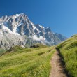 Stock Photo: Alpine path