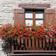 Balcony with flowers — Stock Photo #3771530