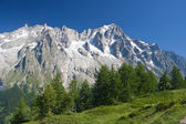 Les Grandes Jorassese - Mont Blanc — Stock Photo