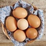 Fresh brown eggs — Stock Photo #3087030