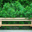 Bench in old park - Stock Photo