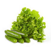 Green lettuce and cucumbers — Stock Photo