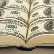 Dollars in books — Stock Photo #3293590