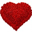 Stock Photo: Valentines Day Rose Heart o