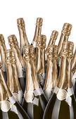 Lot of champagne bottles — Stock Photo