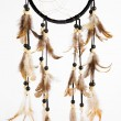 Indian dreamcatcher - Stock Photo