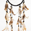 Stock Photo: Indidreamcatcher