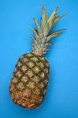 Pineapple on Blue — Stock Photo