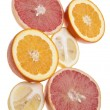 Group of Citrus — Stock Photo