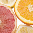 Group of Citrus - Stock Photo