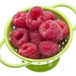 Fresh Raspberries in a Colander - Stock Photo