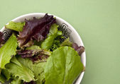 Salad on a Green Background — Stock Photo