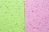 Green and Pink Sponge — Stock Photo