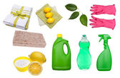 Variety of Green Cleaning Supplies — Stock Photo