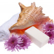 Flowers and Soap Spa Image — Foto Stock