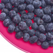 Fresh Blueberries in a Vibrant Pink Bowl — Foto Stock