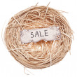 Sale Sign in a Birds Nest — Stok fotoğraf