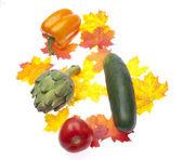 Fall Garden Bounty — Stock Photo