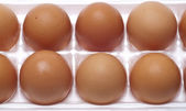 Brown Eggs — Stock Photo