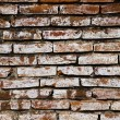 Bricks wall background — Stock Photo #2939580