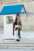 Ceremonial guard — Stock Photo