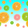 Citrus fruits — Stock Photo #3032162