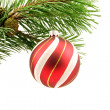 Pine branch with christmas ball — Stock Photo