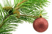 Pine branch with red bauble — Stock Photo