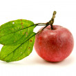 Red apple with green leaves — Stock Photo