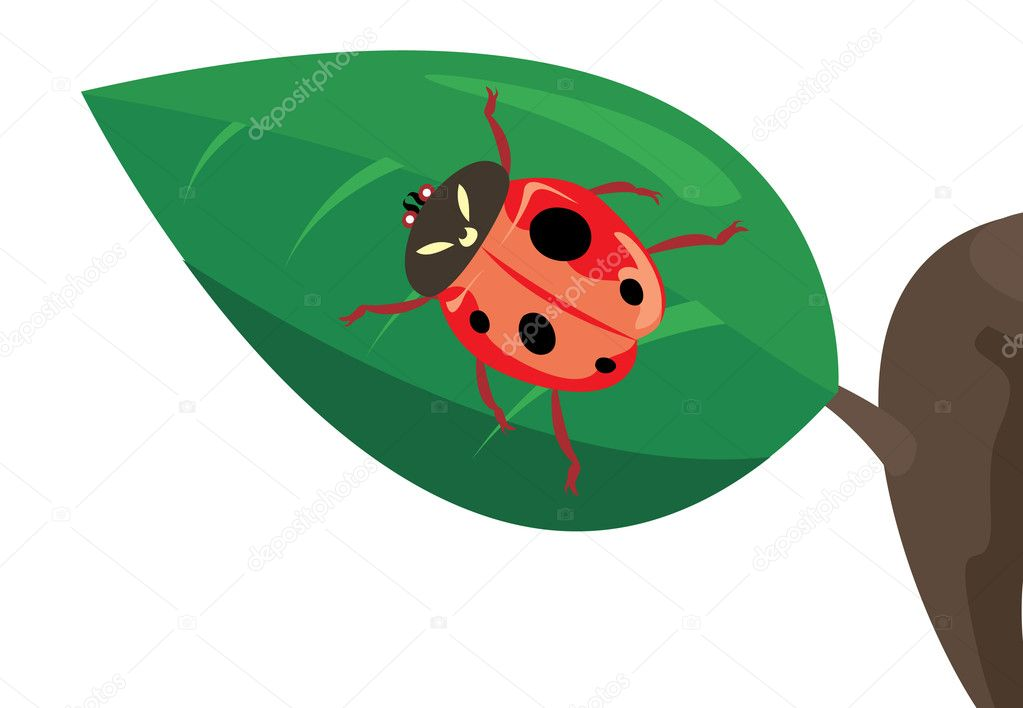 The red ladybird creeps on sheet. A vector illustration — Stock Vector #3498614