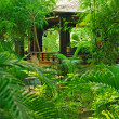 Veranda in the tropical garden — Stock Photo