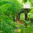 Stock Photo: Verandin tropical garden