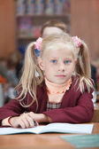 Cute Schoolgirl on real lesson — Stock Photo