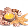 Seashells, starfish and candle — Stock Photo