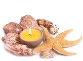 Seashells, starfish and candle — Stock Photo