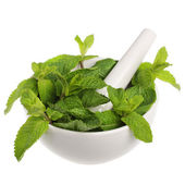 Mortar with mint — Stock Photo