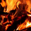 Bonfire - Stock Photo