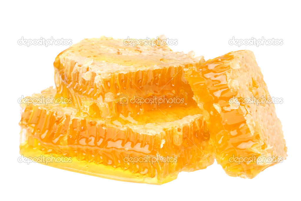 Honeycomb isolated on white background — Stock Photo #3700516