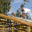 Stock Photo: Roofers Fastening