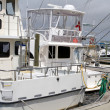 Stock Photo: Fishing Charter Boats